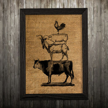 Animal poster Farm print Burlap print Cattle decor BLP28