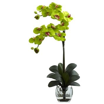 Silk Flowers -Double Green Phal Orchid With Vase Artificial Plant