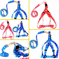 Nylon Pet Dog Cat Collar Peppy Dog Harness Collar Pet Safety Led Leash Rope Belt 5 color avilable free shipping