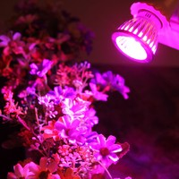 E27 SMD 5730 Lamp 10W Led Grow Light AC85-265V Led Growing Lamp for Flowers Plants Vegetables Growing Flowering Plant Hydropon
