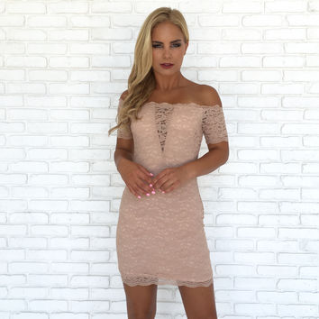 Soft & Delicate Lace Dress In Blush Pink
