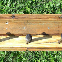 Wall Shelf, Coat Rack Rustic, Distressed , wood from a 1845 School House Wood and Rail Road Spikes, OAK, Recycled