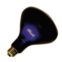 Blacklight 75 Watt Spot Bulb