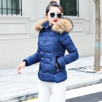 Trendy New 2018 Winter Jacket Women Coats Artificial raccoon hair collar Female Parka black Thick Cotton Padded Lining Ladies S-3XXXL AT_94_13