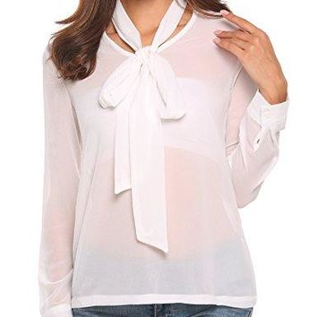 Zeagoo Womenrsquos Sheer Chiffon Blouse Long Sleeve Shirts VNeck Top