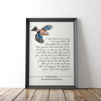 Movie poster, Shawshank Redemption poster, some birds, friendship, instant digital download, Stephen King quote, Film classic, printable art