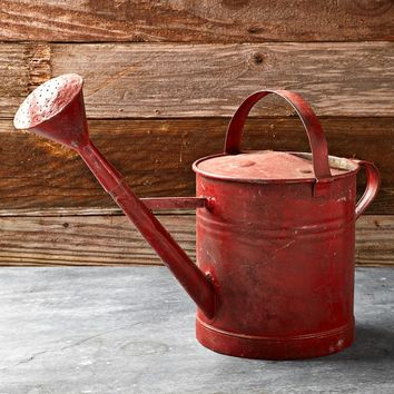 Vintage Painted Watering Can