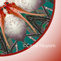 Ibis Mandala Art Print, Kaleidoscope, FREE SHIPPING, Photo Art, Red, Marine Blue