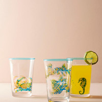 Sea Creature Juice Glass