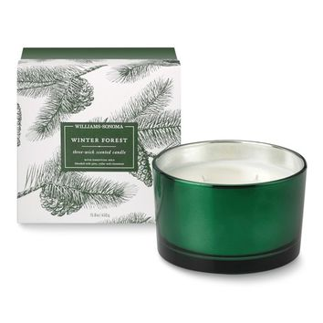 Williams-Sonoma Triple-Wick Candle, Winter Forest