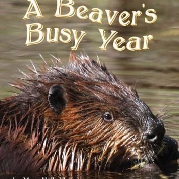 The Beavers' Busy Year (Common Core English Language Arts)