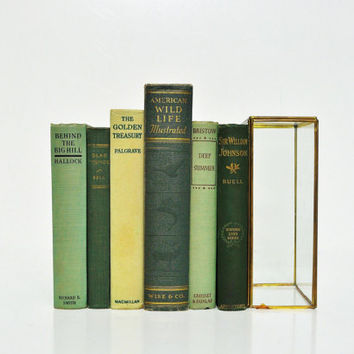 Green and Gold Vintage Book Collection
