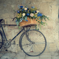 "Bicycle Photography, Travel, Bicycle, Flowers, France, Teal Blue, 8x10, ""Bike In Pujols"""