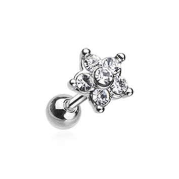 Starburst Sparkle Flower Cartilage Tragus Helix Earring 18ga Body Jewelry