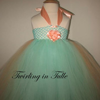 Flower Girl Dress Mint Green and Peach Tulle Flower Girl Dress Size 0-24M