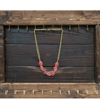 Double Hook Jewelry Organizer
