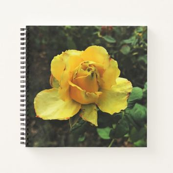 Single Yellow Rose Notebook