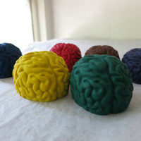 Large Brains Crayon Set of 8