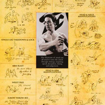 Bruce Lee Tao of Jeet Kune Do Poster 24x36