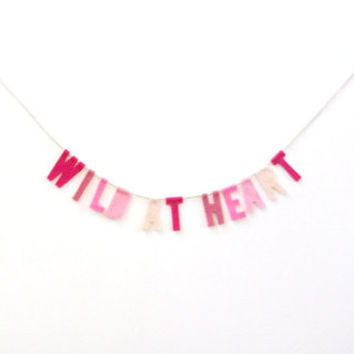 Wild At Heart Felt Party Banner in Pink Ombré