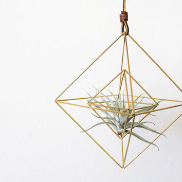Himmeli fig. 9 - Double Diamonds | Brass, Modern Minimalist Geometric Hanging Ornament, Mobile, and Air Plant Holder