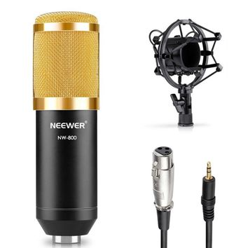 Neewer NW-800 Professional Condenser Microphone Kit:Microphone For Computer+Shock Mount+Foam Cap+Cable As BM 800 Microphone