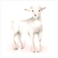 Lamb Nursery Art Print - Sweet Blush