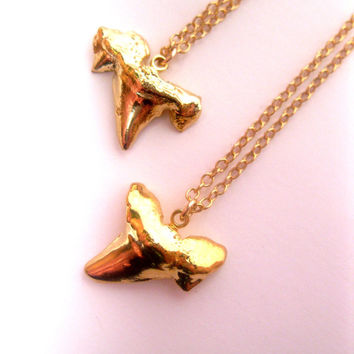 Sleek Polished 24k Gold Dipped Real Shark Tooth Necklace