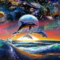 Dolphin Cosmic Planetary Space Poster Decor 263