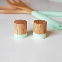 Mint Green Wood Mini Salt and Pepper Shaker Set | Wedding Table Salt and Pepper | Kitchen Decor | Hostess Gift