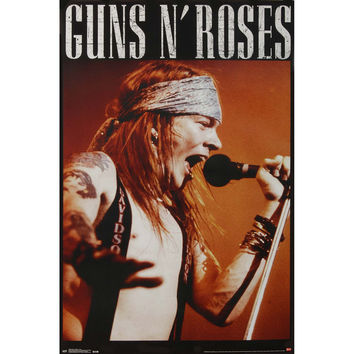 Guns N Roses Domestic Poster