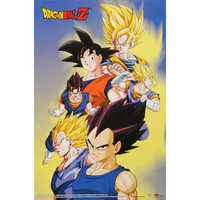 Dragon Ball Z Domestic Poster