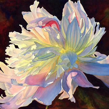 White Peony watercolor painting print 16 x 22 art by Cathy Hillegas, June Light, white, pink, yellow, blue, purple