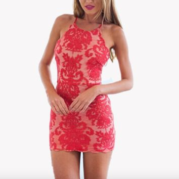 Scalloped Lace Mini Dress