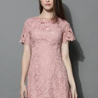 Divine Lace Open-back Dress in Rouge Pink