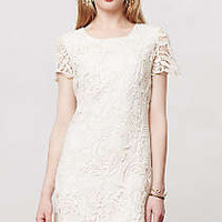 Anthropologie - Madeleine Dress