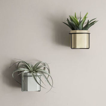 Plant Wall fixation - For flower pot Old green by Ferm Living