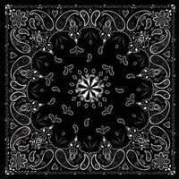 ZANheadgear Paisley 100 Percentage Cotton Premium Bandanna (Black)
