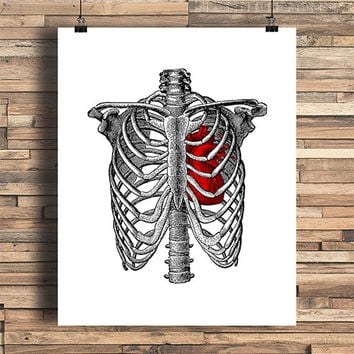 Rib Cage With Anatomical Heart Illustration, Bones, Human Anatomy, Home, College Dorm Room, Indie, Hipster, Tattoo Design, Giclee Art Print