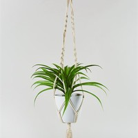 Hanging Faux Spider Plant (90cm) - Matalan