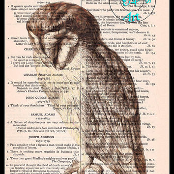 Brown Owl Drawing Art Beautifully Upcycled Vintage Dictionary Page Book Art Print, Bird Art Print