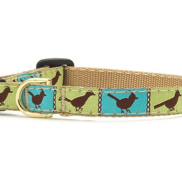 Up Country Blue and Green Songbird Cat Collar