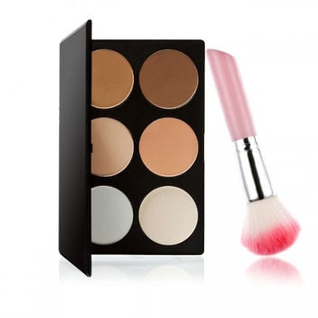 6-Color Powder Blush Palette Set with Blush Brush