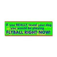 Flyball Guilt Trip Car Magnet 10 x 3> Flyball Guilt Trip> Weasel Puppy's Flyball and Dog Stuff