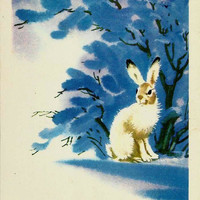 Rabbit in winter forest, Vintage Russian Postcard, New Year, Winter unused 1979