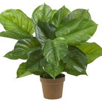 """27"""" Sunroom Philodendron, Faux, Trees"""