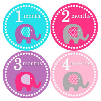 Baby Girl Monthly Baby Stickers Style #085