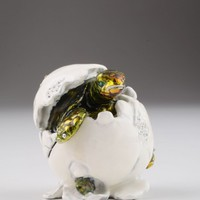 Turtle in an Egg Shell