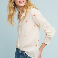 Grace Embroidered Buttondown