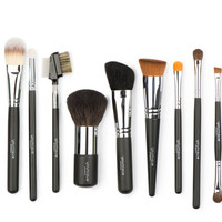 Complete Brush Set from Stacy Thompson
